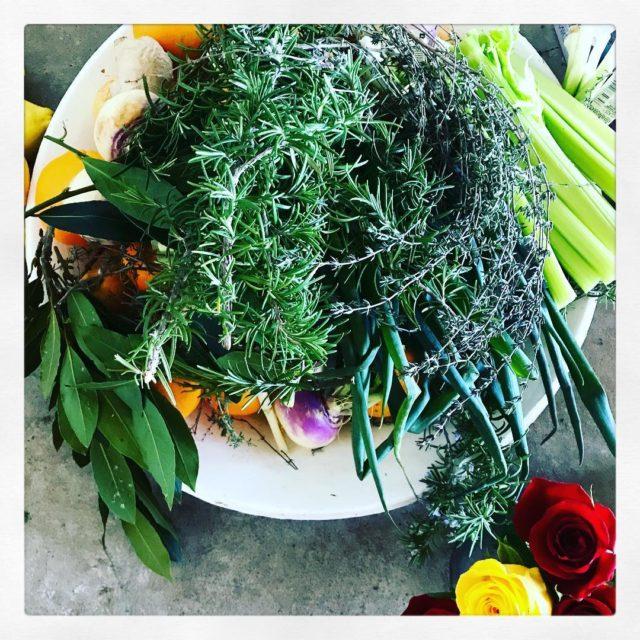 Herbs celery decor roses bellaniehaus adelemaartens huiskok langebaan duinhuis langtafelhellip