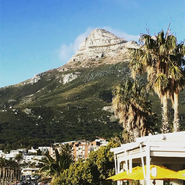 lionshead campsbay launch bilboa chinchilla kovecollection capetown whaletalesblog lovemylife