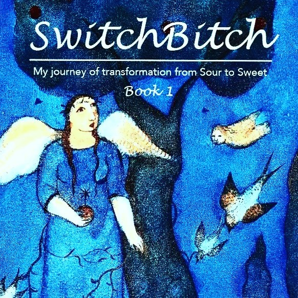 SwitchBitch now on amazon ebook kindle book lovemylife httpswwwamazoncomeB079VJXS45?refpe1724030132998070
